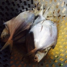 瓜拖子怎么做红烧鲳鱼的做法