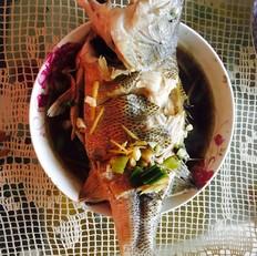 电饭锅煮什么菜好吃清蒸鲈鱼的做法