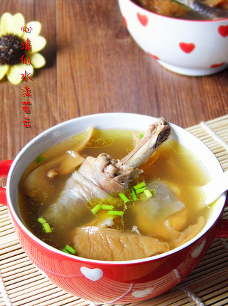 元蘑炖鸡汤的做法