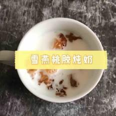 雪燕桃胶炖奶