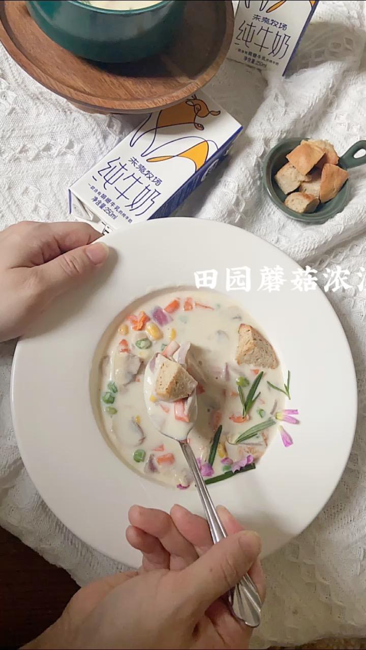 不正宗却快手好吃——低卡田园蘑菇浓汤的做法