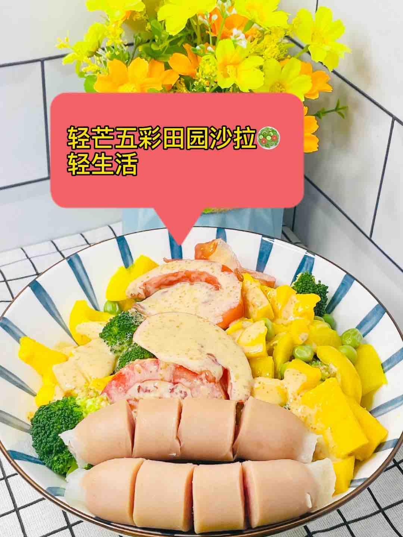 轻芒五彩沙拉助力轻生活,多吃多美味