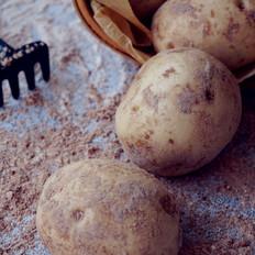 象形土豆包