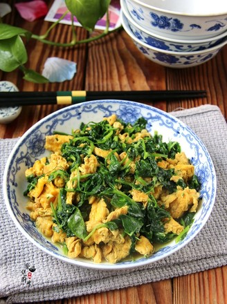豌豆苗炒土鸡蛋的做法