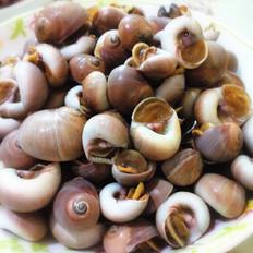 原味海螺的做法大全