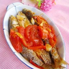 番茄焖尖头鱼