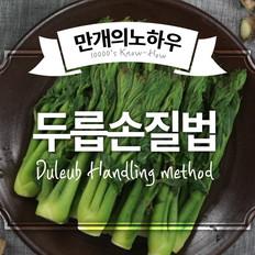 楤木芽料理方法