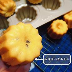 百香果奶香小蛋糕