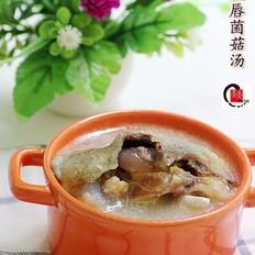 鲟鱼唇菌菇汤
