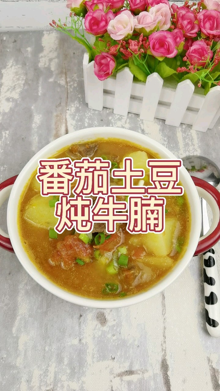 0基础做出土豆软烂牛腩酥烂的经典家常美食,汤汁浓郁拌饭能吃三大碗的做法