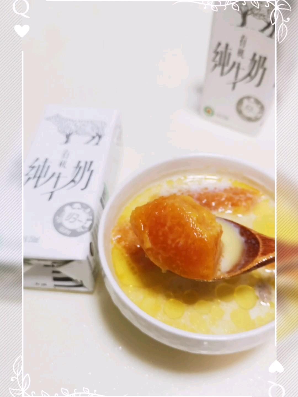 木瓜牛奶排骨汤