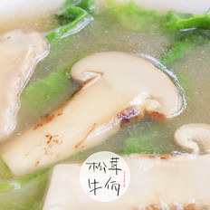 鸡汤浇松茸小苦菜 牛佤松茸食谱
