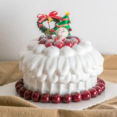 2017最新款圣诞蛋糕培训