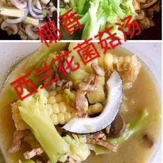 椰香西兰花菌菇汤(蔬菜营养汤)