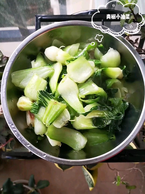 青椒小油菜
