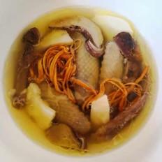 老鸽椰子汤(鸽子&椰子)
