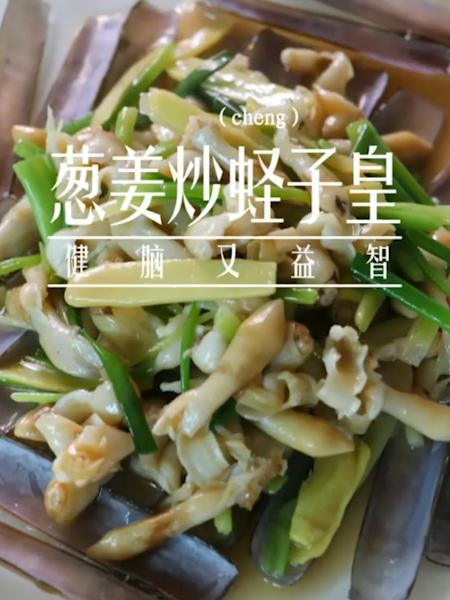 葱姜炒蛏子皇成品图