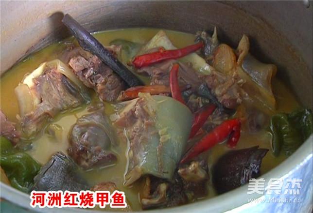 河洲红烧甲鱼的家常做法