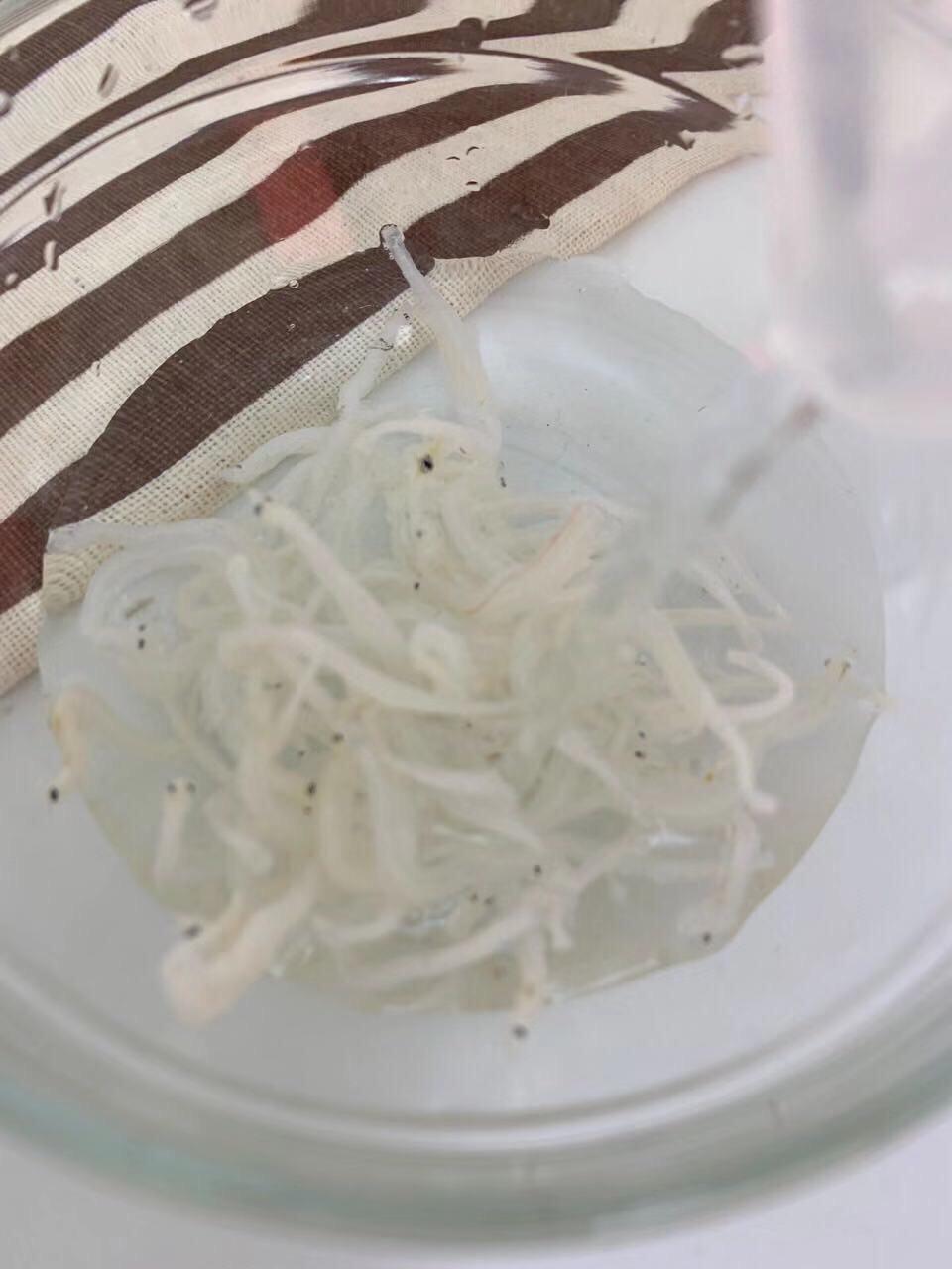 宝宝辅食  银鱼秋葵煎蛋的做法图解