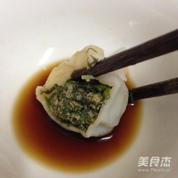 茴香猪肉水饺的做法大全