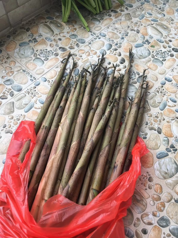 鲜竹笋饺子的做法大全