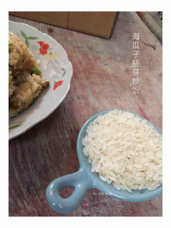 海瓜子胚芽炒饭成品图