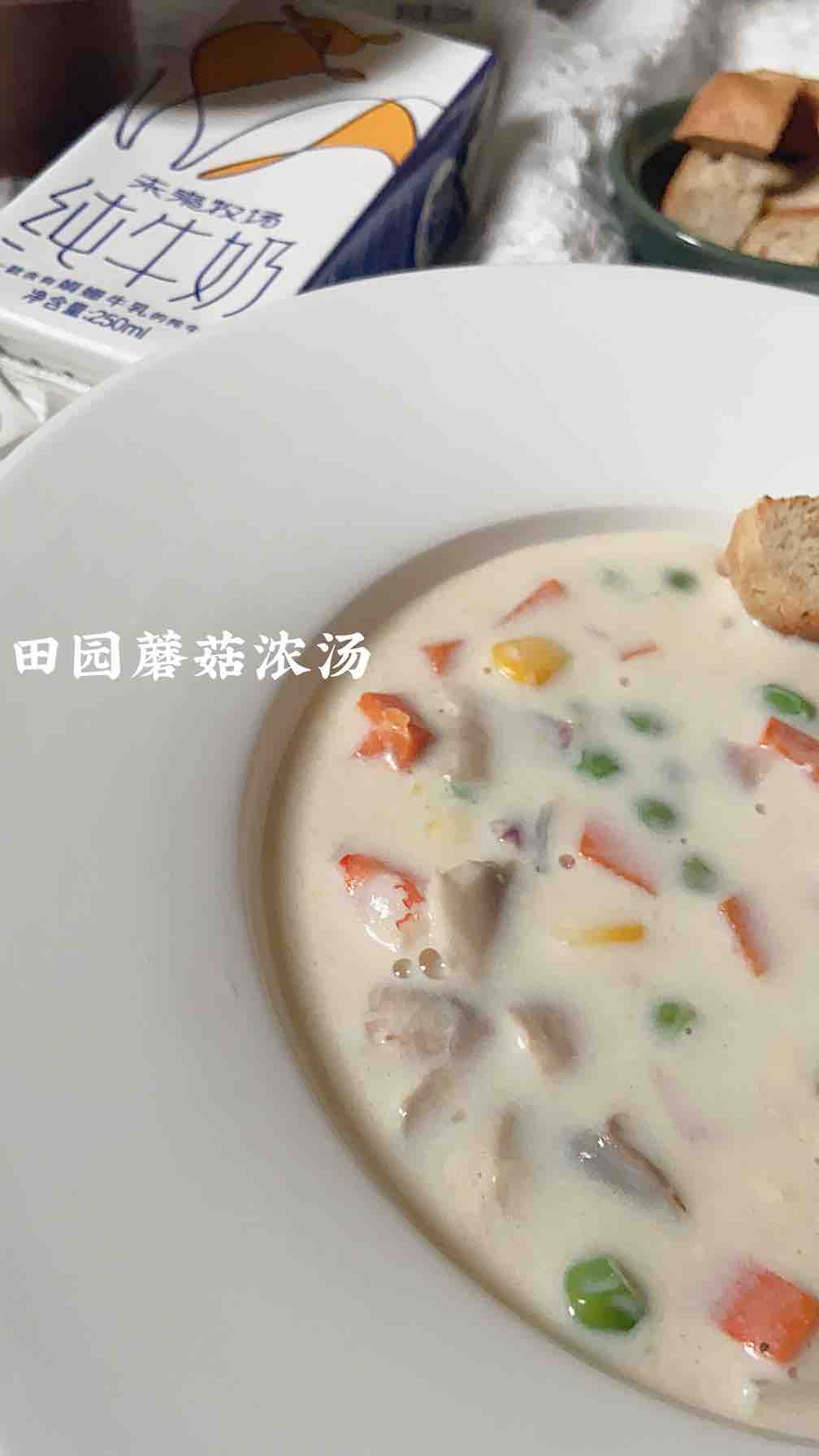 不正宗却快手好吃——低卡田园蘑菇浓汤成品图