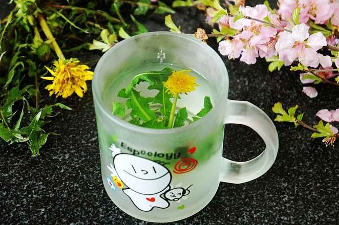 蒲公英花茶怎么吃