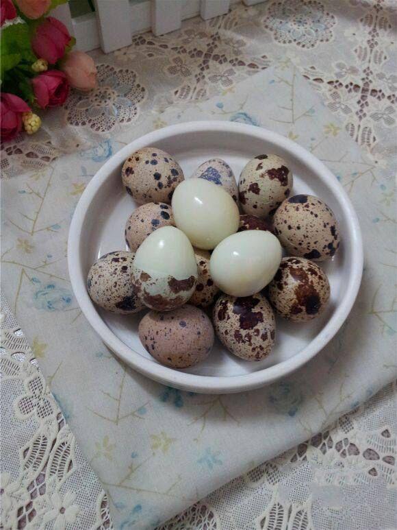 盐水鹌鹑蛋怎么做