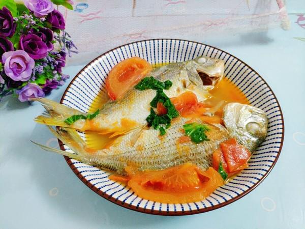 番茄鱼怎么煮