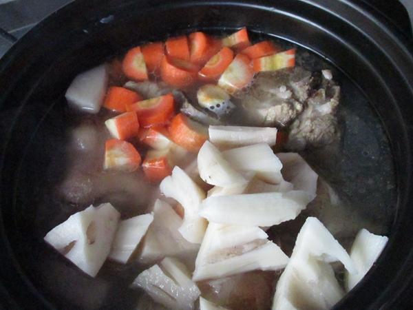 马兰头猪骨汤怎么煮