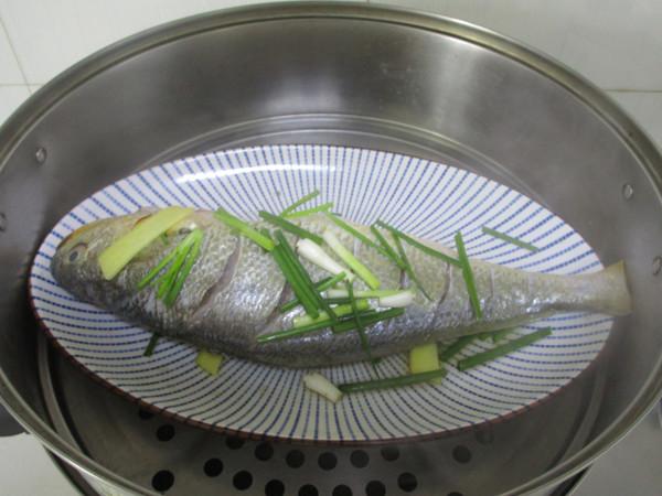 清蒸大黄鱼的简单做法