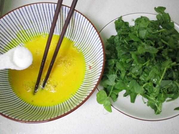 豌豆苗炒土鸡蛋的做法图解