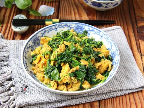 豌豆苗炒土鸡蛋怎么做