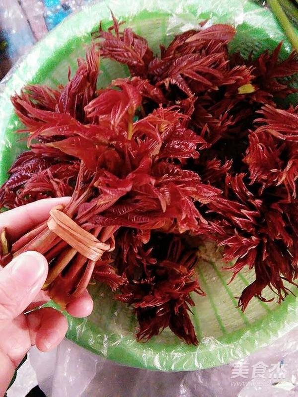 香椿鲜----春叶炒蛋的做法大全
