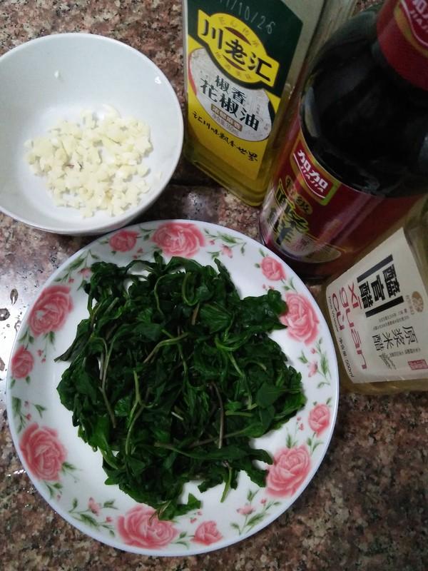 野菜--马兰头怎么做