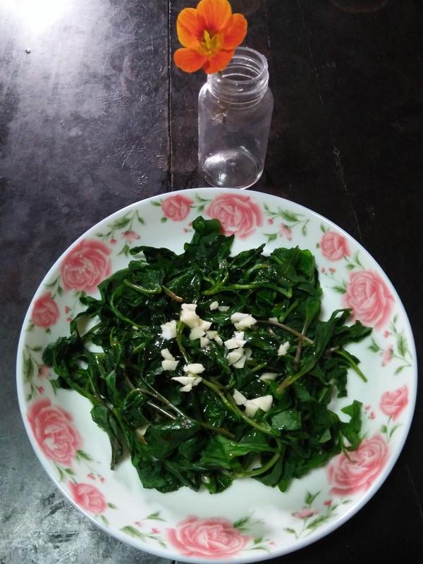 野菜--马兰头怎么炒