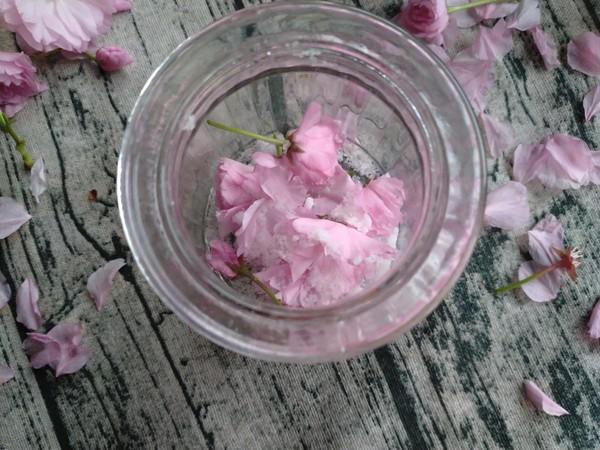 盐腌樱花的家常做法