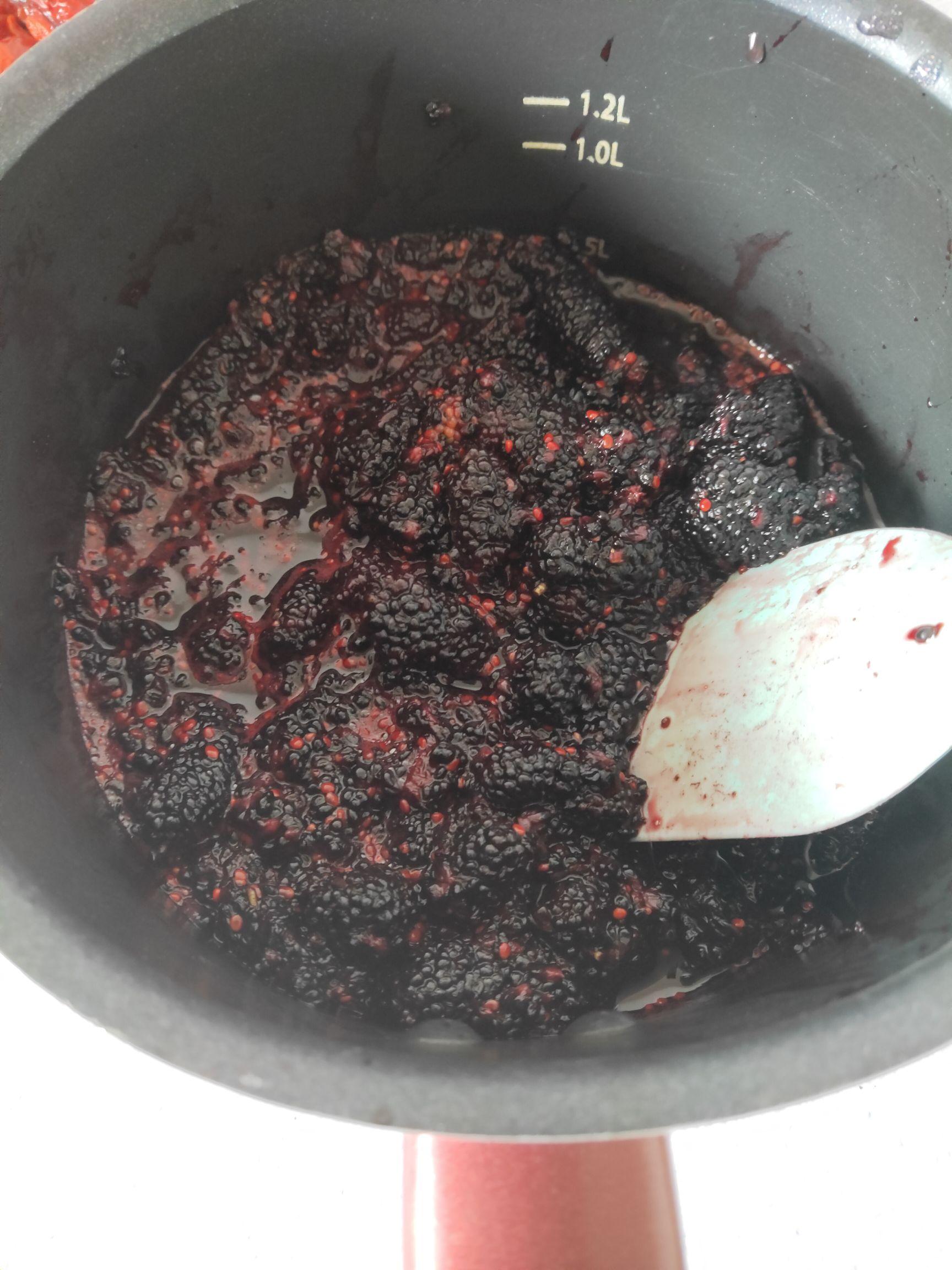 桑葚红枣枸杞养生膏的做法图解