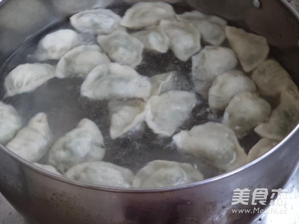 香菜猪肉馅水饺怎么煮