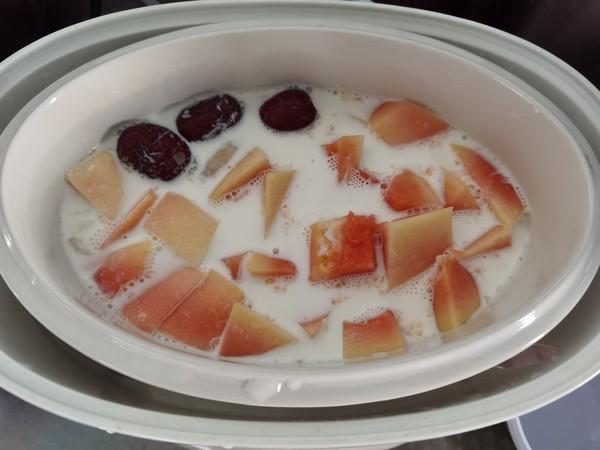 冰糖牛奶木瓜炖雪蛤怎么煮