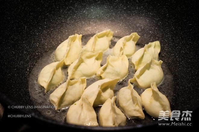 煎/煮韭菜鲜肉手工饺怎样炖