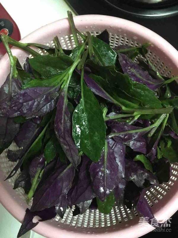 凉拌紫背天葵的做法图解