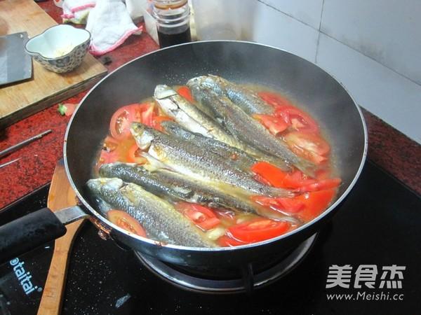 番茄焖尖头鱼怎么做