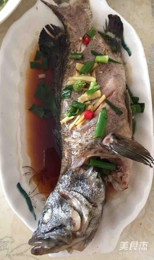蒸石斑鱼的家常做法