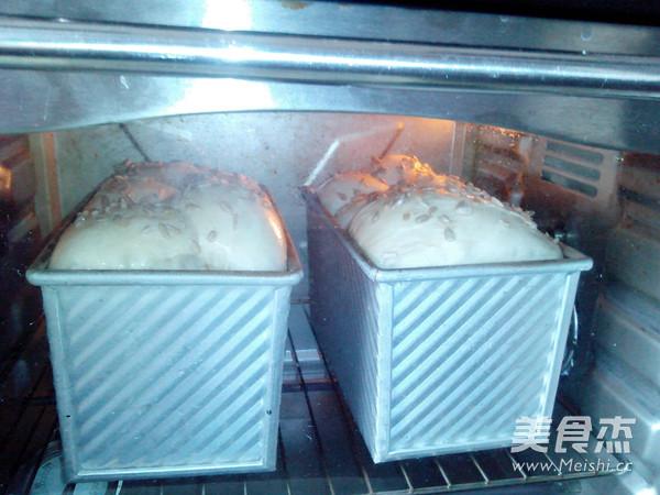 中种白土司怎么炒