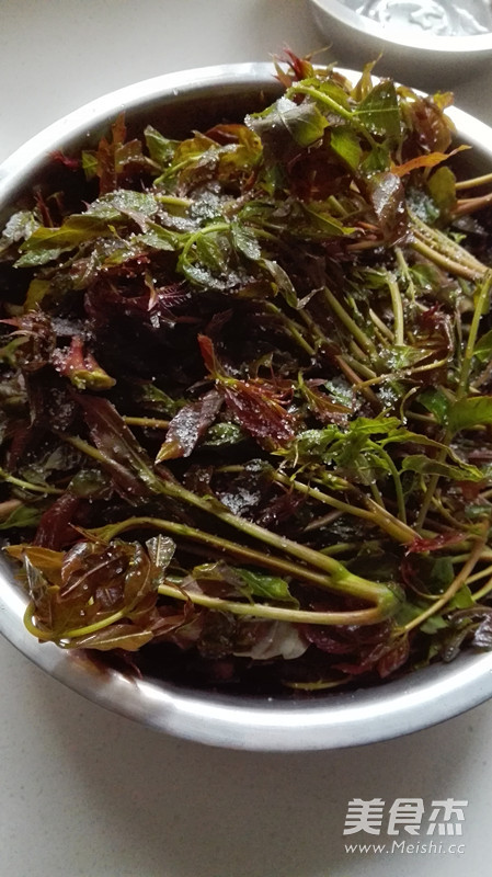 腌香椿芽的简单做法