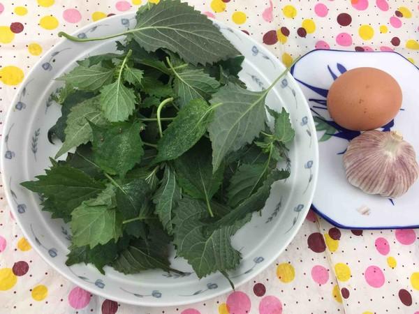 鸡蛋炒紫苏叶的做法大全