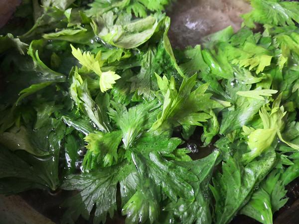 凉拌芹菜叶的做法图解