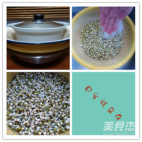 自发绿豆芽的做法图解